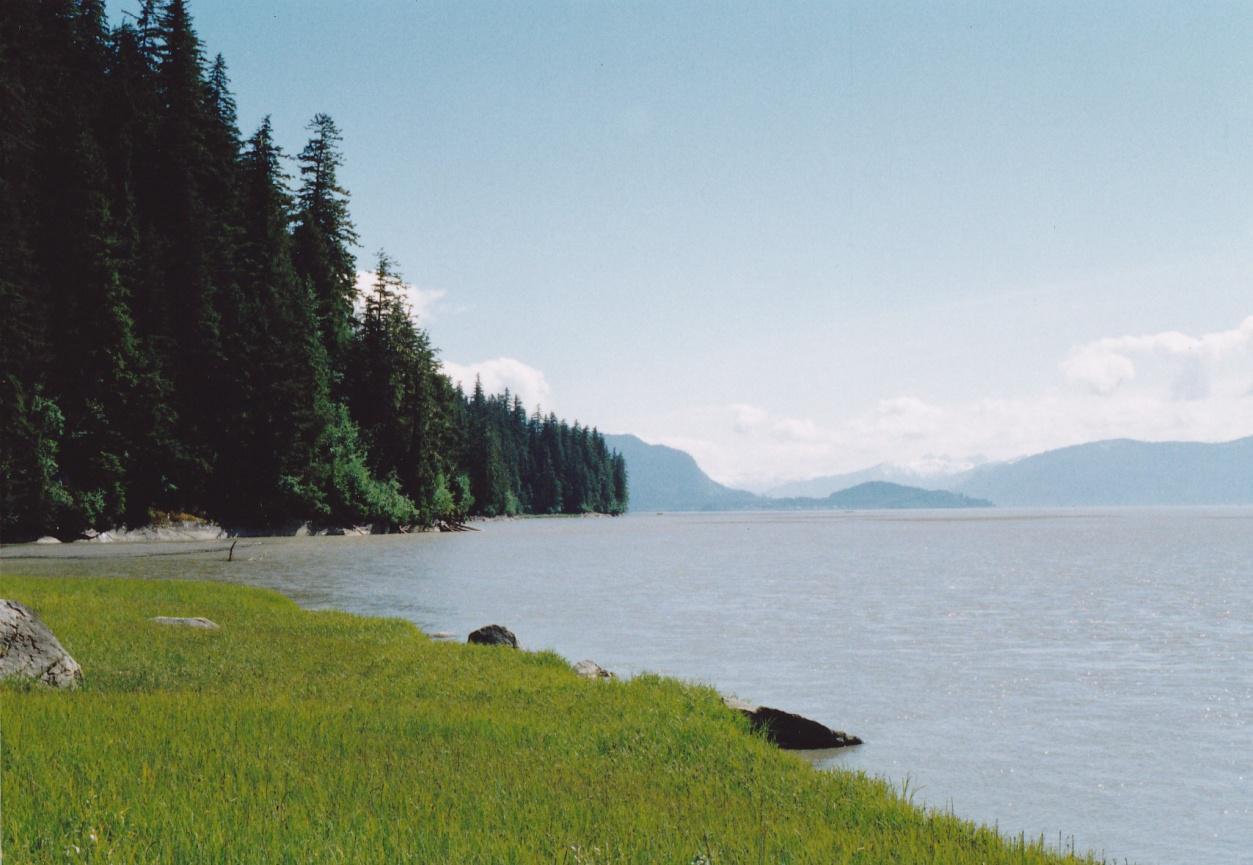 Garnets From Wrangell Alaska 1991 Mine Rat Minerals