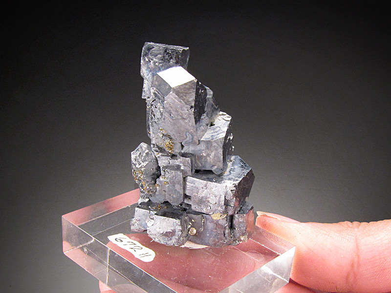 Galena Crystals Elmwood Mine Smith County Tennessee USA Mineral Specimen For Sale