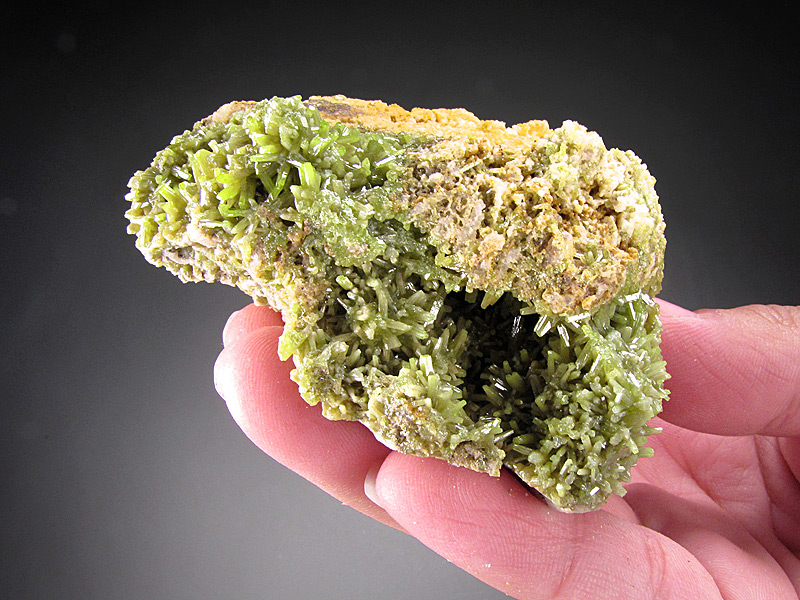 Pyromorphite Crystals on Matrix San Luis Mine Guazapares Guazapares Mining District Sierra Madre Occidental Chihuahua Mexico Mineral Specimen For Sale