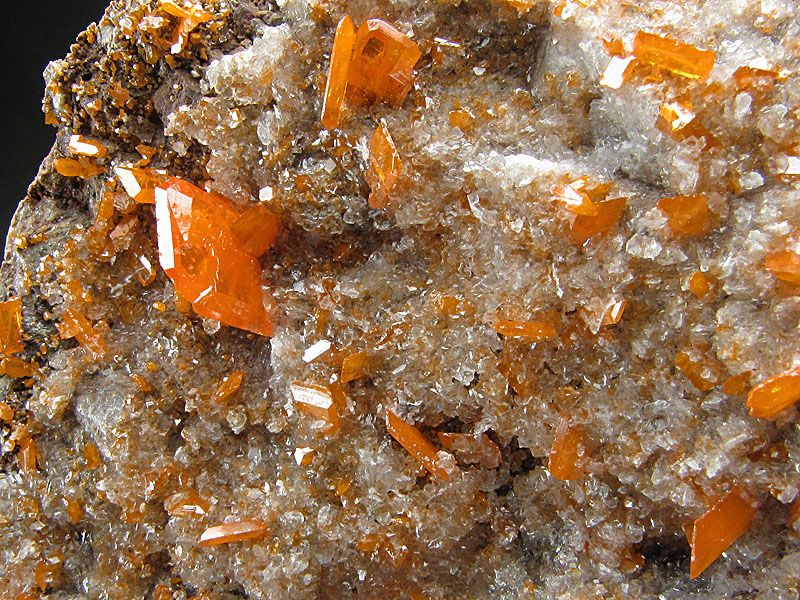 Mineral Specimen Wulfenite Crystals on Matrix Red Cloud Mine Silver District La Paz County Arizona Orange For Sale