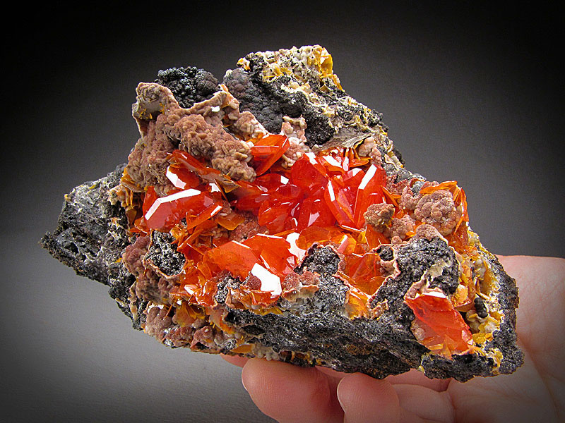 Mineral Specimen Red Wulfenite Crystals Kuruktag Mountains Shanshan County Xinjiang Uyghur Autonomous Region China For Sale