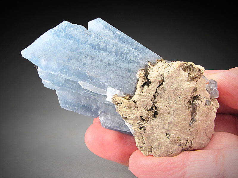 Celestite Crystals Newport Quarry Newport Monroe County Michigan Mineral Specimen For Sale
