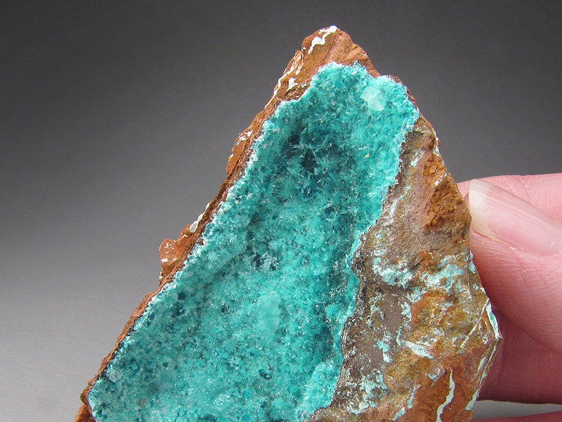 Aurichalcite and Calcite Ojuela Mine Mapimi Municipio de Mapimi Durango Mexico Mineral Specimen For Sale