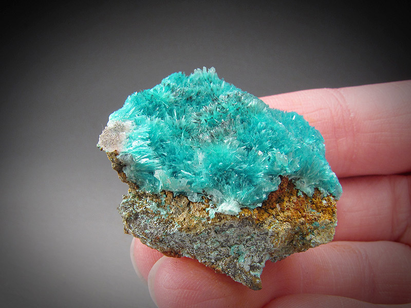 Aurichalcite and Calcite Crystals Ojuela Mine Mapimi Municipio de Mapimi Durango Mexico Mineral Specimen For Sale