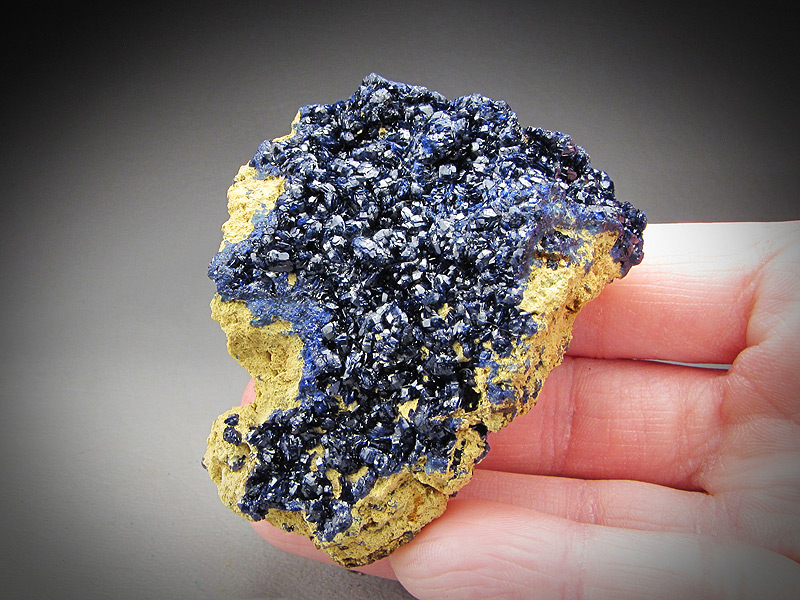 Azurite Concepcion del Oro Zacatecas Mexico Mineral Specimen For Sale
