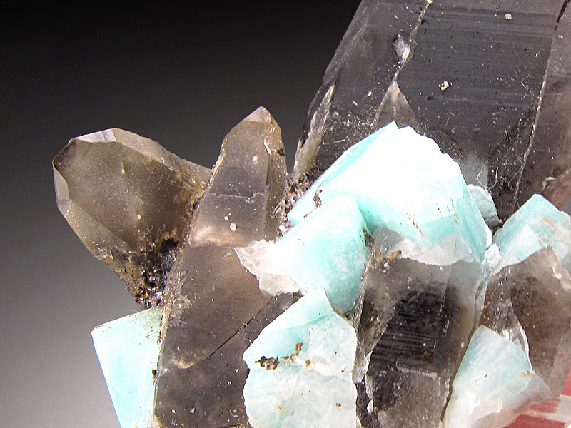 Amazonite and Smoky Quartz Crystals Glacier Peak Claims Crystal Peak Teller County Colorado Mineral Specimen For Sale