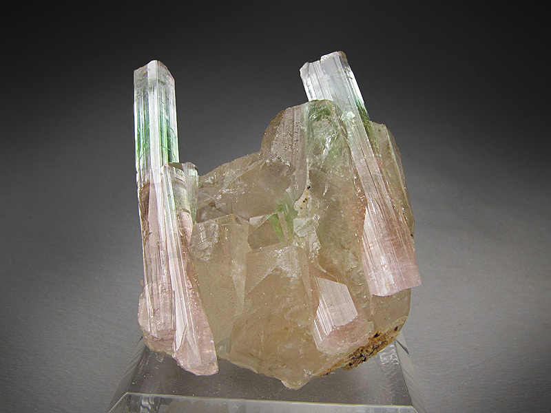 Elbaite Tourmaline Crystals on Quartz Paprok Mine Kamdesh District Nuristan Province Afghanistan Mineral Specimen For Sale