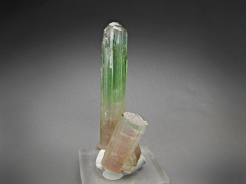 Elbaite Tourmaline Crystal Paprok Mine Kamdesh District Nuristan Province Afghanistan Mineral Specimen For Sale