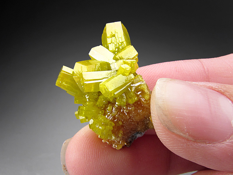 Green Pyromorphite Crystals Bunker Hill Mine Kellogg Coeur d'Alene District Shoshone County Idaho Mineral Specimen For Sale