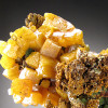 Wulfenite Crystals on Matrix, Mapimi, Mexico