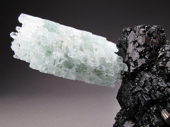 Aquamarine and Black Tourmaline Crystals, Erongo, Namibia