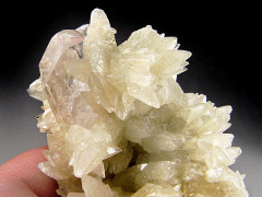 Calcite over Danburite, Charcas, Mexico