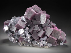 Fluorite and Galena Crystals, Hill-Ledford Mine, Illinois