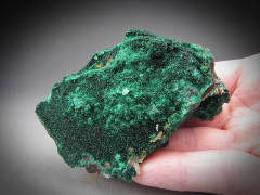 Malachite, Concepcion del Oro, Mexico