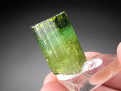 Green Tourmaline Crystal, Urubu Mine, Brazil